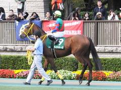 20151031 東京11R アルテミスS(G3) テイケイレーヴ 10