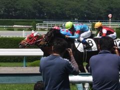 20160618 阪神8R 3歳上牝馬500万下 レーヌドブリエ 24