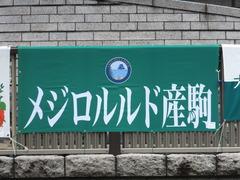 20150621 東京10R 芦ノ湖特別 マッサビエル 01