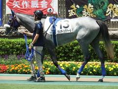 20180609 東京6R 3歳牝馬未勝利 ウェディングベール 06