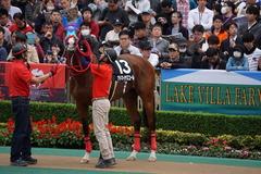 20191124 東京10R ウェルカムS (3勝) アドマイヤスコール 12