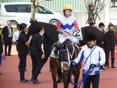 20180331 阪神3R 3歳未勝利 テンノカガヤキ 23