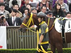20141102 東京4R ノーブルクリスタル 06