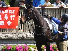20150426 東京1R 3歳未勝利 ジュンコアー 08