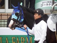 20190323 中山7R (500) アドマイヤムテキ 04