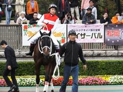 20151031 東京10R 赤富士S ショウナンアポロン 13