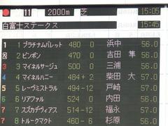 20180127 東京11R 白富士S(OP) マイネルサージュ 01