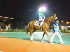 20140622 大井8R ライトハーティド 08