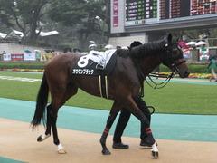 20141012 東京10R レジェンドTC オウケンブラック 08