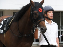 20161001 中山10R 習志野特別 オウケンブラック 04