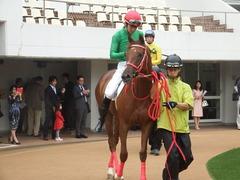 20180929 中山5R 2歳牝馬メイクデビュー オトナノジジョウ 17