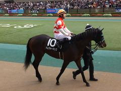 20151129 東京9R オリエンタル賞 トレジャーマップ 12