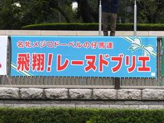 20151010 東京9R 山中湖特別 レーヌドブリエ 01