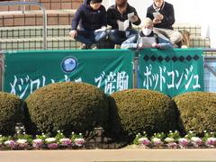 20140118 中山競馬場 ポッドコンジュ 02