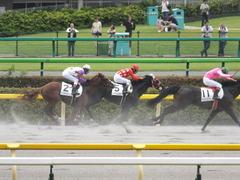 20140621 東京4R トマトリコピン 11