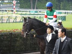20161027 東京3R 2歳未勝利 パリンジェネシス 13