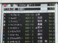 20170625 東京1R 3歳牝馬未勝利 プンメリン 02