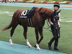 20161009 東京10R テレビ静岡賞(1600) ランドマーキュリー 03