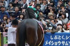 20191103 東京11R AR共和国杯(G2) パリンジェネシス 13