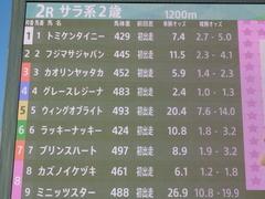 20181115 大井2R 2歳新馬 ラッキーナッキー 01