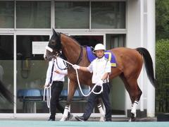 20140915 大井11R 東京記念 ユーロビート 02
