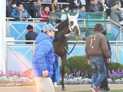 20151226 中山2R 2歳未勝利 カズノメガミ 07