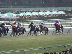20141228 中山10R 有馬記念 サトノノブレス 09