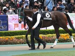 20161127 東京8R シャングリラ賞 ツクバアスナロ 11
