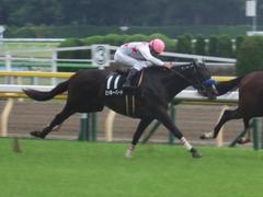 20190608 東京9R 八丈島特別 1勝 ミッキーバード 26
