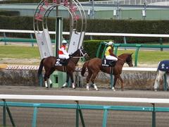 20150321 中山10R 韓国馬事会杯 ランドマーキュリー 06