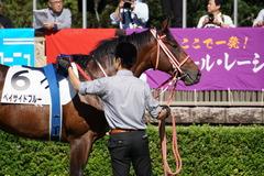 20191026 東京3R 2歳未勝利 ベイサイドブルー 08