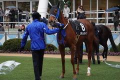 20200118 中山9R 菜の花賞 3歳牝馬1勝クラス シホノレジーナ 15