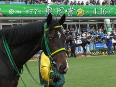 20170408 中山5R 3歳未勝利 ジュンマシュウ 04