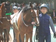 20190616 東京8R 3歳上1勝クラス ミヤコローズ 07