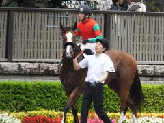 20170625 東京1R 3歳牝馬未勝利 プンメリン 23