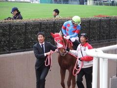 20171118 東京10R ユートピアS(牝1600) レーヌドブリエ 13