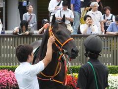 20150627 東京8R 東京JS(JG3) メジロサンノウ 08