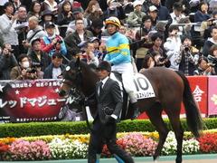 20161030 東京4R 2歳メイクデビュー ビルズトレジャー 17