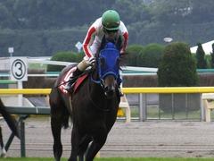 20151107 東京11R 京王杯2歳S(G2) モーゼス 17