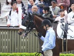20160423 東京5R 3歳未勝利 アークアーセナル 06