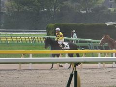 20160423 東京4R 3歳未勝利 ラルゴランド 16