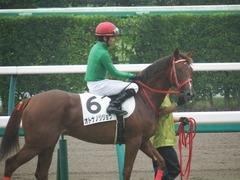 20180929 中山5R 2歳牝馬メイクデビュー オトナノジジョウ 22