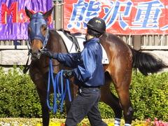 20141116 東京2R ウィンメアリー 04