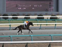 20140126 中山10R ゴールウェイ 11