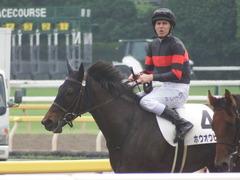 20190608 東京6R 3歳牝馬未勝利 ホウオウヒミコ 20