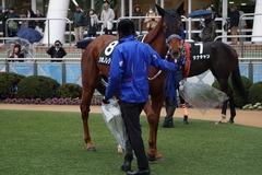 20200118 中山9R 菜の花賞 3歳牝馬1勝クラス シホノレジーナ 14