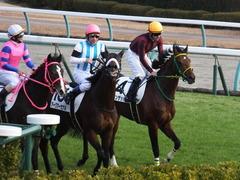 20151227 中山4R 2歳メイクデビュー アークアーセナル 16