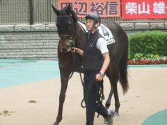 20190608 東京6R 3歳牝馬未勝利 ホウオウヒミコ 14