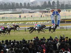 20150222 東京4R 3歳未勝利 ロジダーリング 12