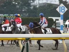 20141124 東京3R シーユーアゲン 14